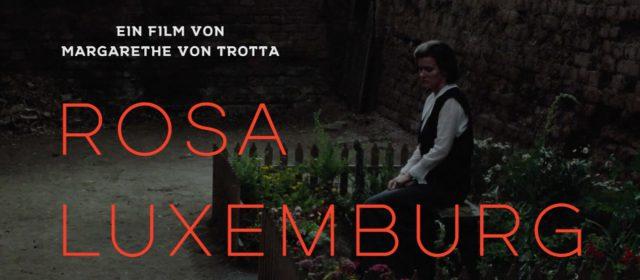 "DIE LINKE präsentierte den Film ""Rosa Luxemburg"""